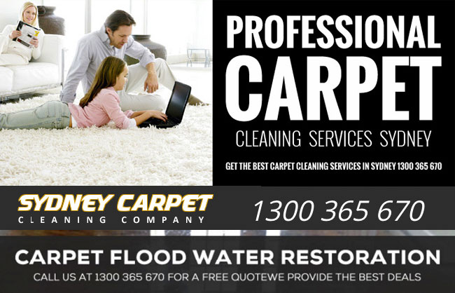Sydney Carpet Cleaning Company